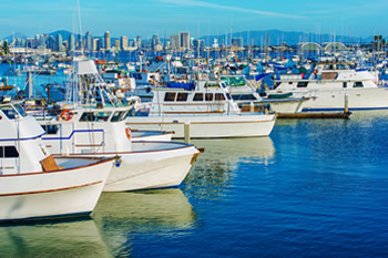 EB-5 Regional Center in California. Photo of San Diego marina with city in the background.